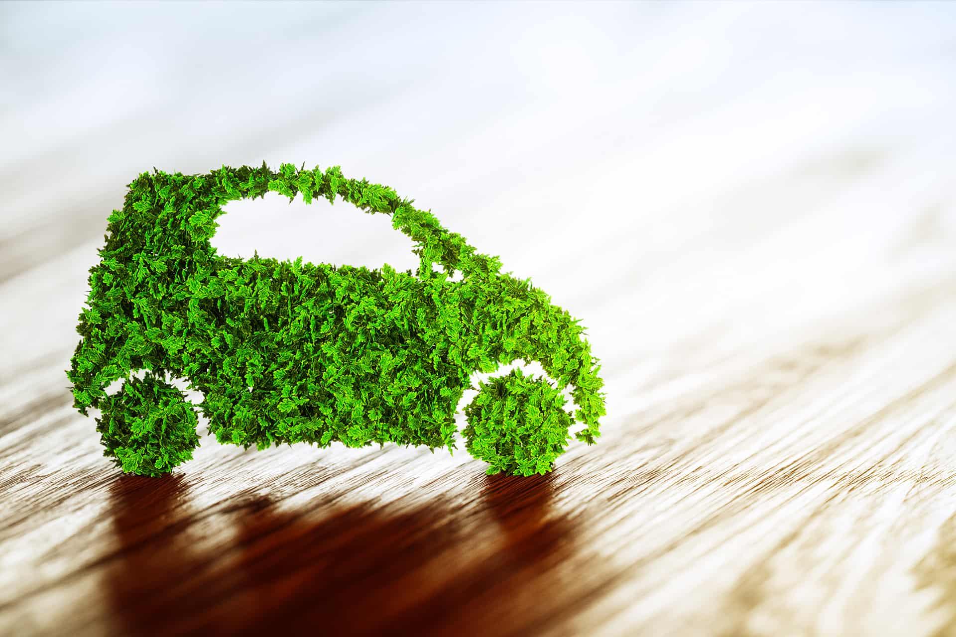 Grønt gress som er formet som en bil